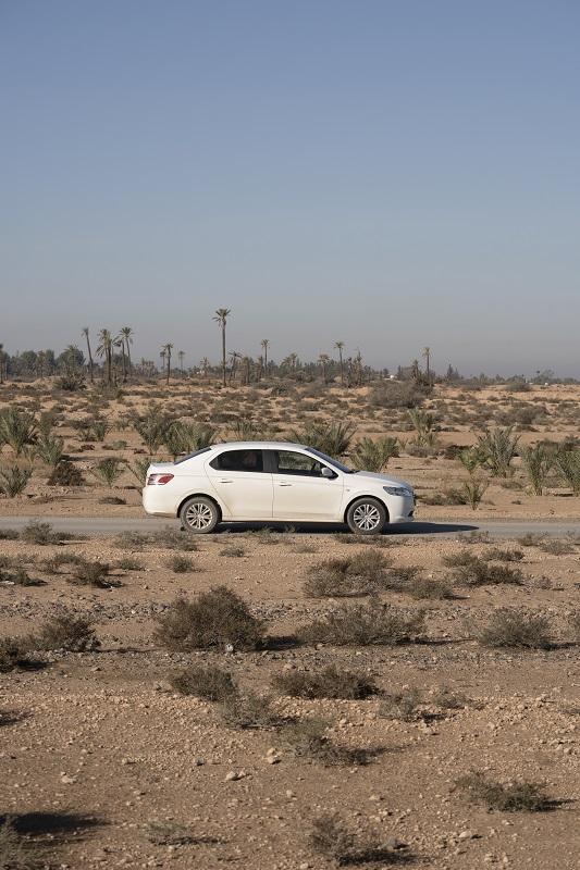 White Sedan car driving through the Marrakech palm tree Oasis