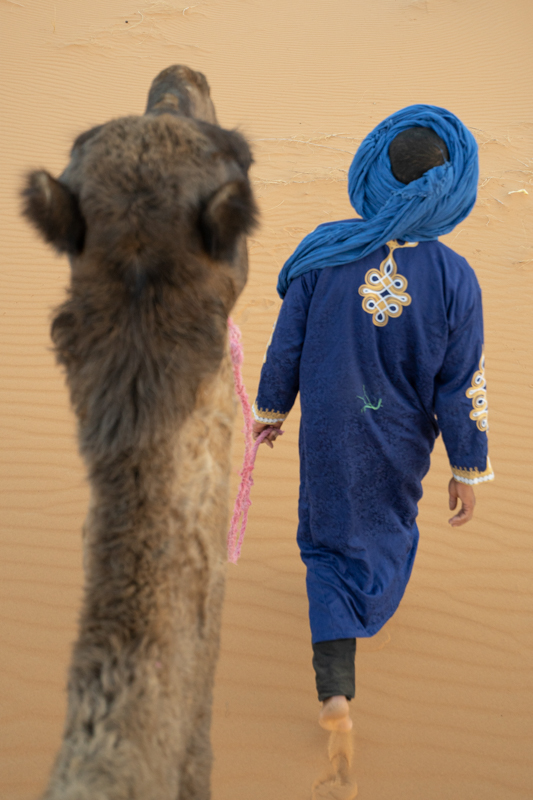 Above view of Bedouin blue nomad walking his camel across the desert