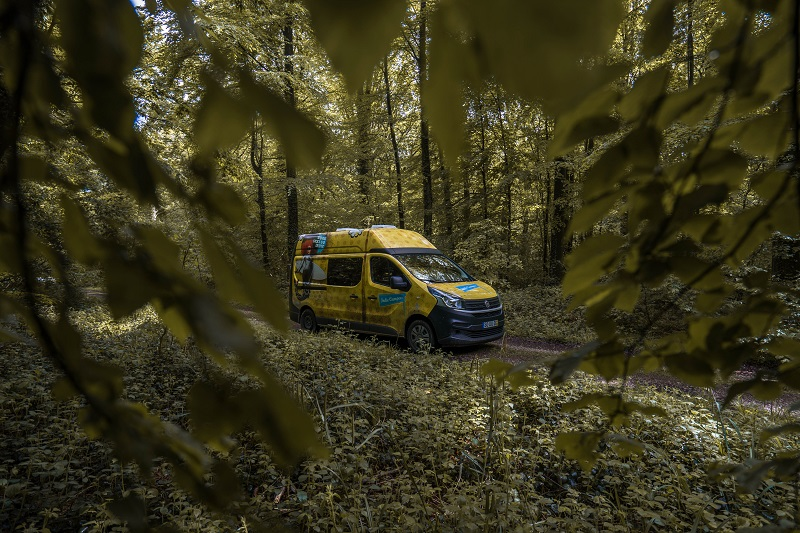 Campervan on a road wihin a lush forest