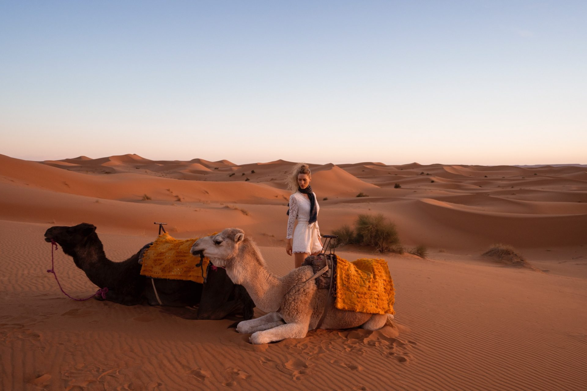 Woman and camel in Sahara Desert at sunset
