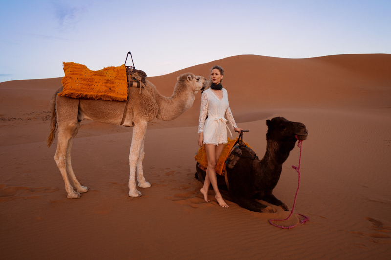 A beautiful woman stands near camels at sunset in Morocco, Sahara Desert, Africa
