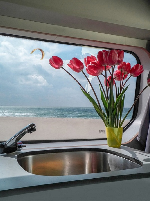 View of the beach from the inside of a campervan